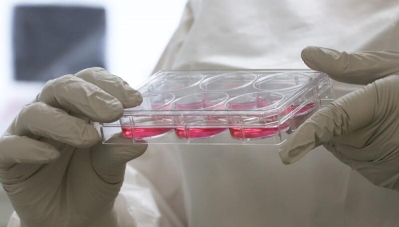 ebolatest