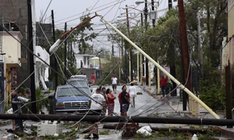 Los daños causados por Odile no superan a los de Wilma: AMIS. (Foto: Cuartoscuro)