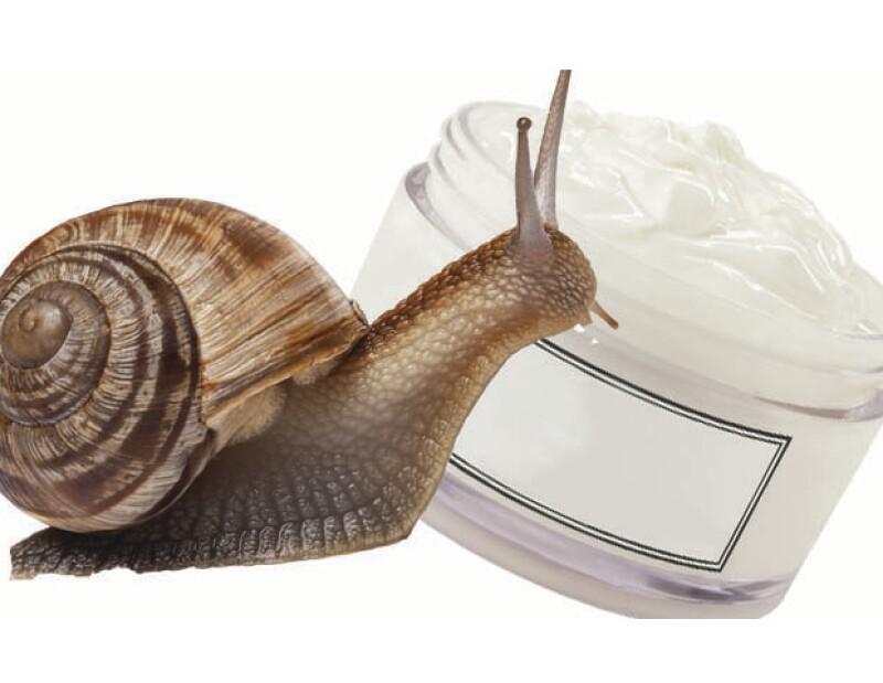 Olvídate de productos hechos con lavanda, vainilla o algas marinas. Estos 5 ingredientes cambiarán por completo tu percepción de la belleza y los productos que compras.