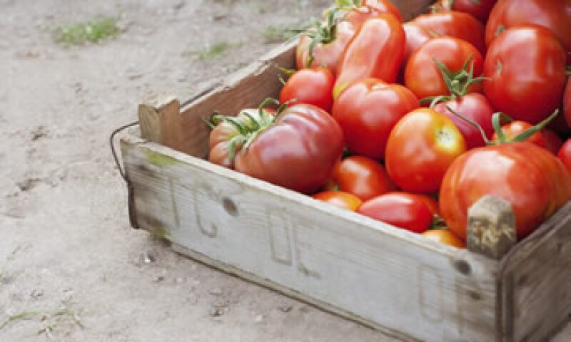 En enero próximo se vence el acuerdo de suspensión de dumping para las exportaciones del tomate mexicano. (Foto: Getty Images)