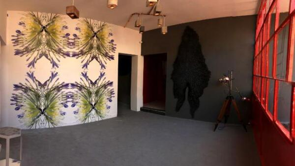 Design House 213