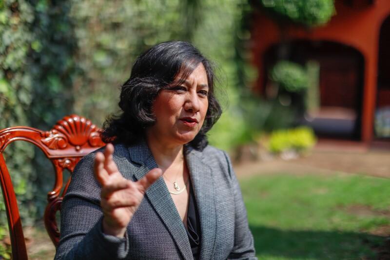 Irma Eréndira Sandoval