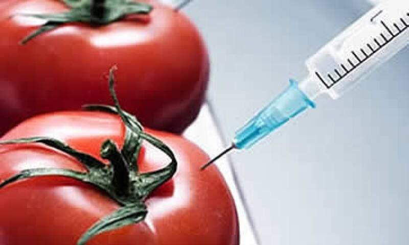 Biotecnología (Foto: Stockxpert)