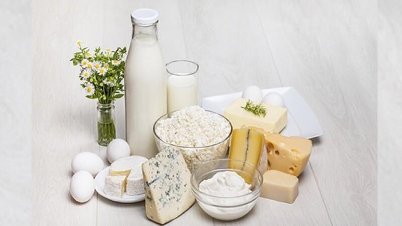 lacteos leche queso