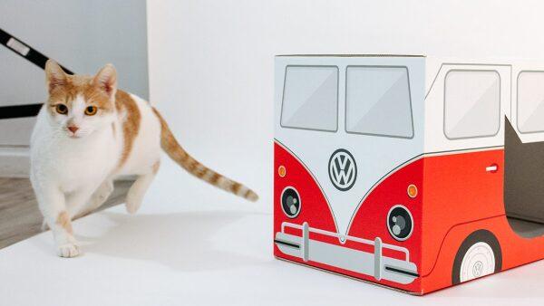 Camper Cat