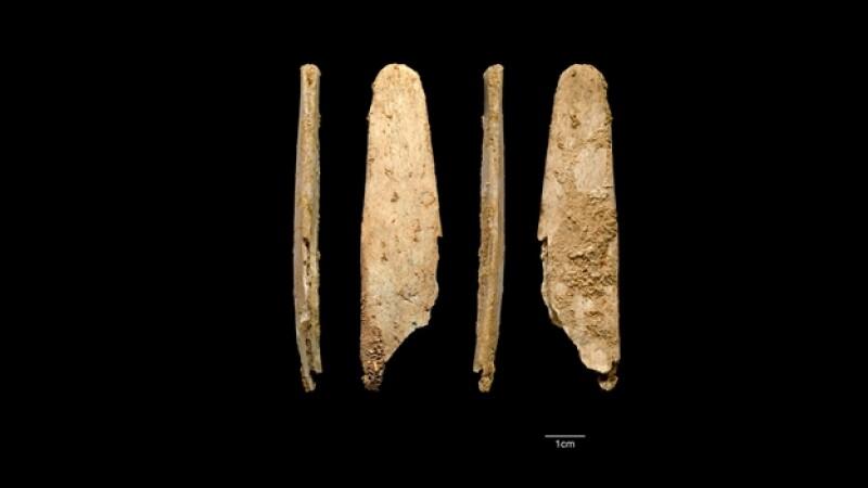herramientas de huesos de los neandertal