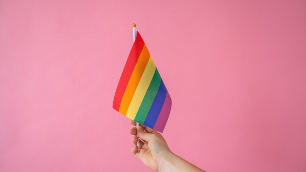 Multicolored flags or LGBT flags