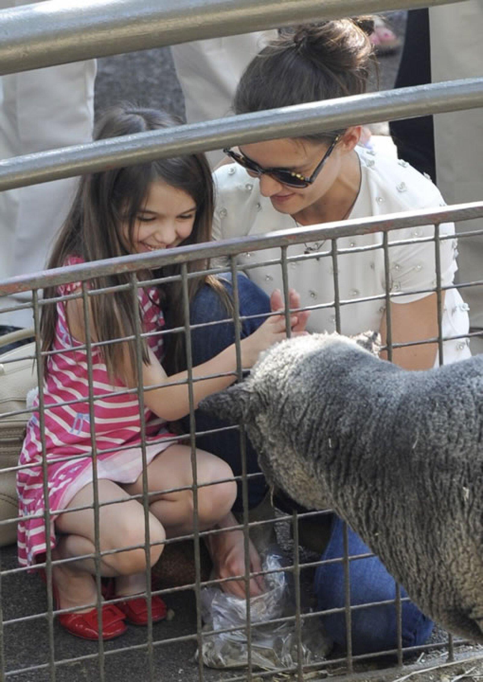 Inclusive tocó algunos animales.