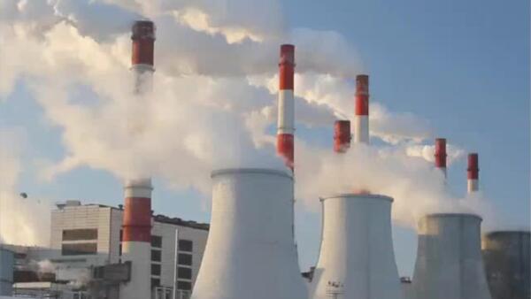 Estas empresas buscan resucitar plantas de la CFE