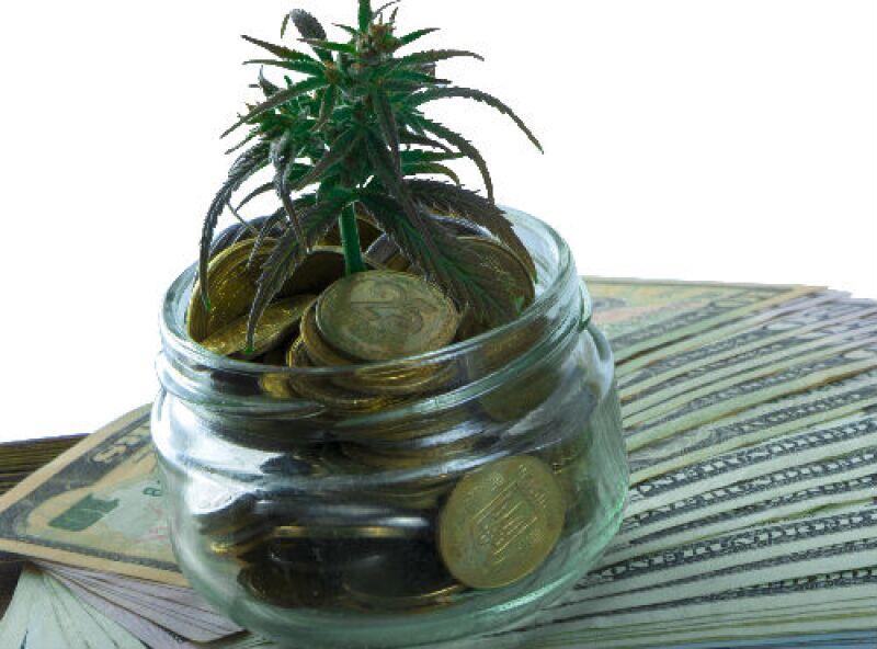 negocios con marihuana