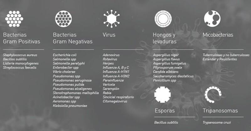Nanotecnología, arma contra los microorganismos