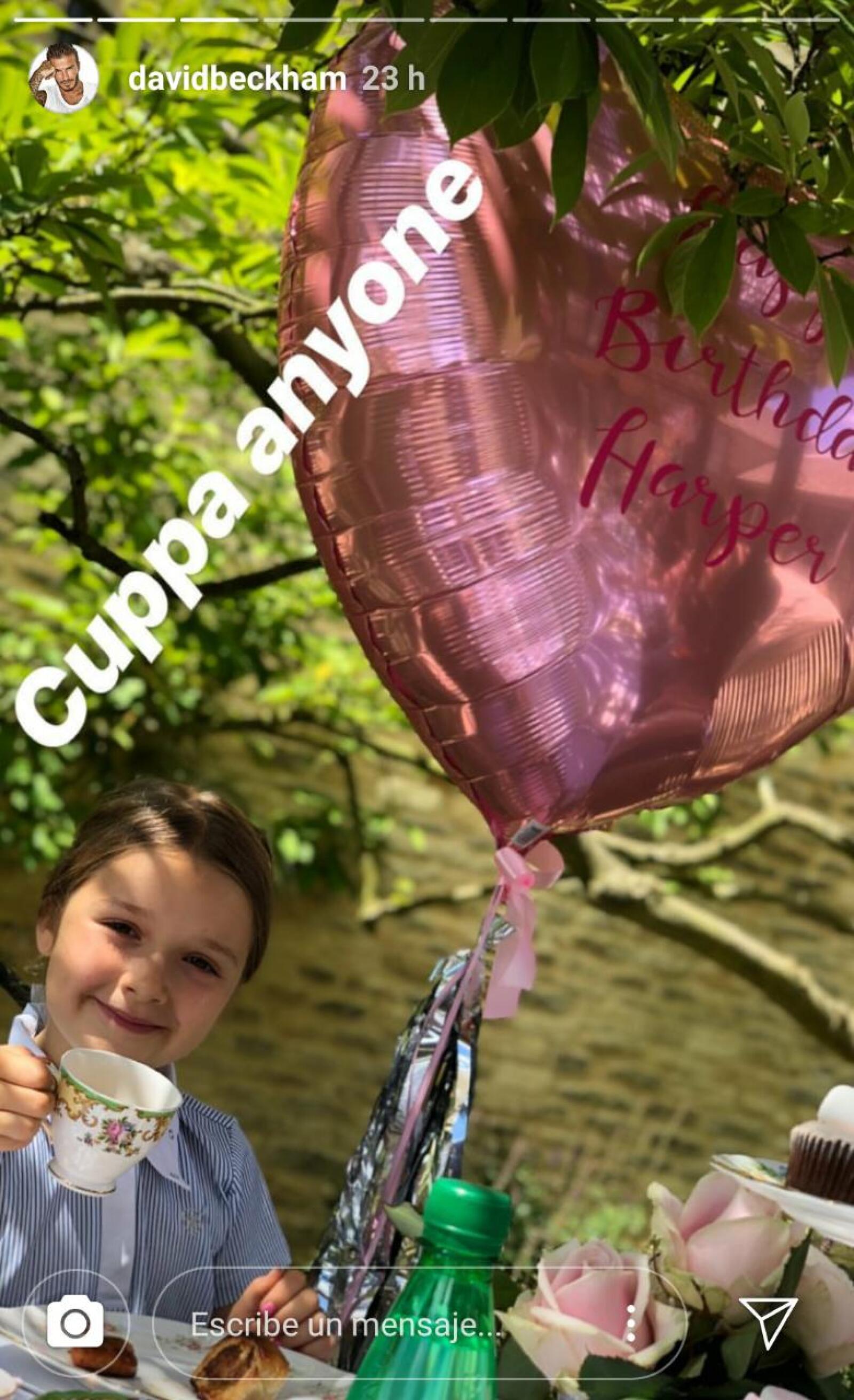 Harper recibe el regalo más espectacular en su cumpleaños