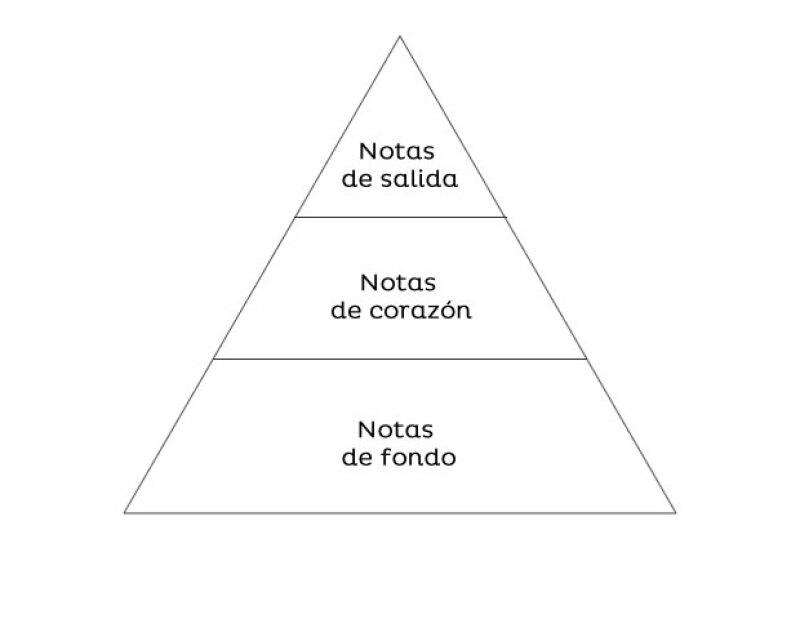 """""""Las notas son una pirámide: tienes las notas de salida, las notas de corazón y las notas de fondo."""""""