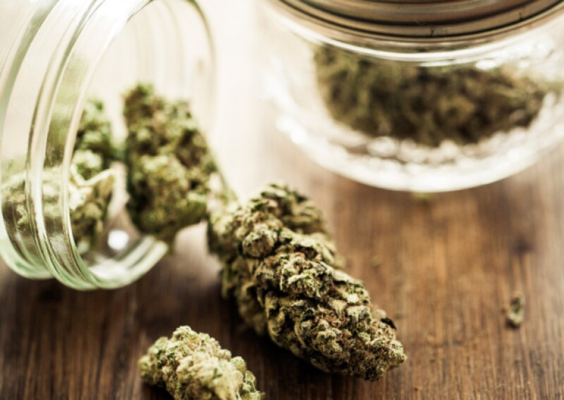 Cuatro ministros de la Primera Sala votaron a favor de un amparo a cuatro personas; con ello podrán sembrar, producir y consumir cannabis.