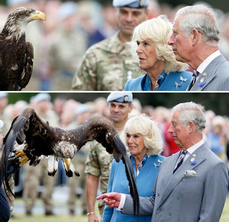 La pareja real sufrió un penoso momento con el águila de la Fuerza Armada Aérea británica.