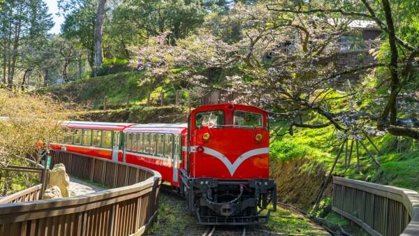 railway in alishan forest recreaction area, Taiwan