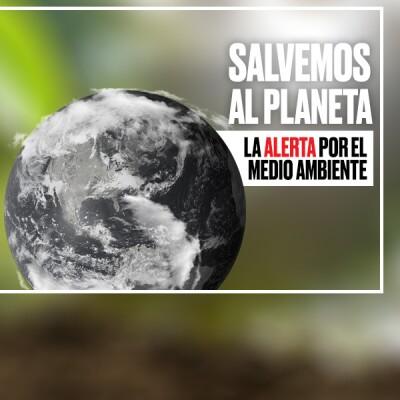 media principal salvemos al planeta
