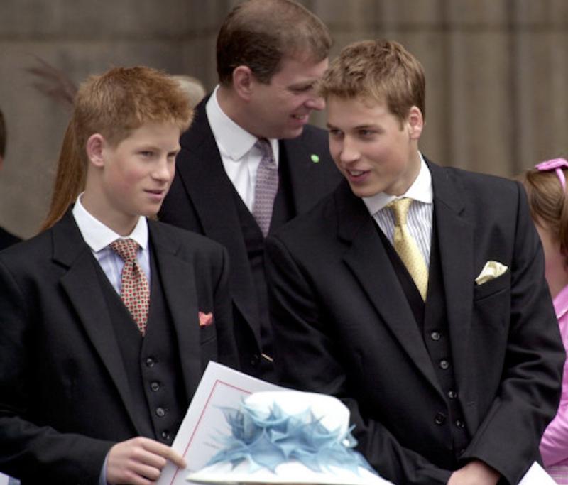 príncipe-harry-príncipe-william.jpg.png