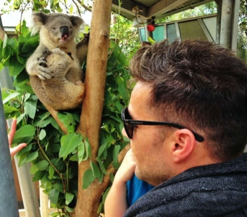 El koala que sorprendió al cantante y a sus hijos por sus tintes exhibicionistas.