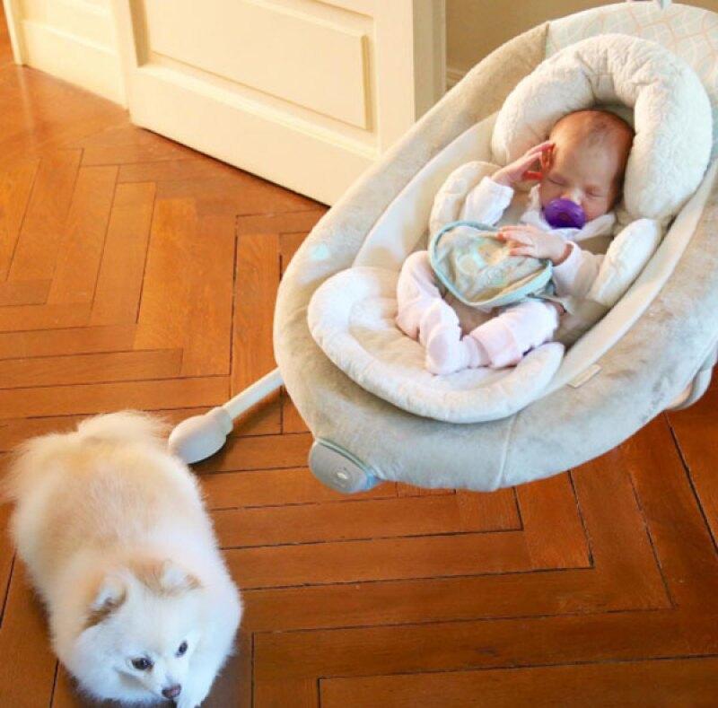 La pequeña Amaia es cuidada celosamente por la perrita Uli.