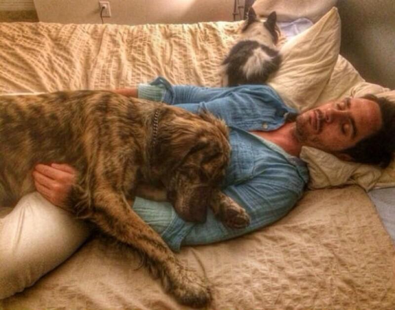 Aislinn captó esta foto de Mauricio durmiendo con Oso y su perrito Conejo.