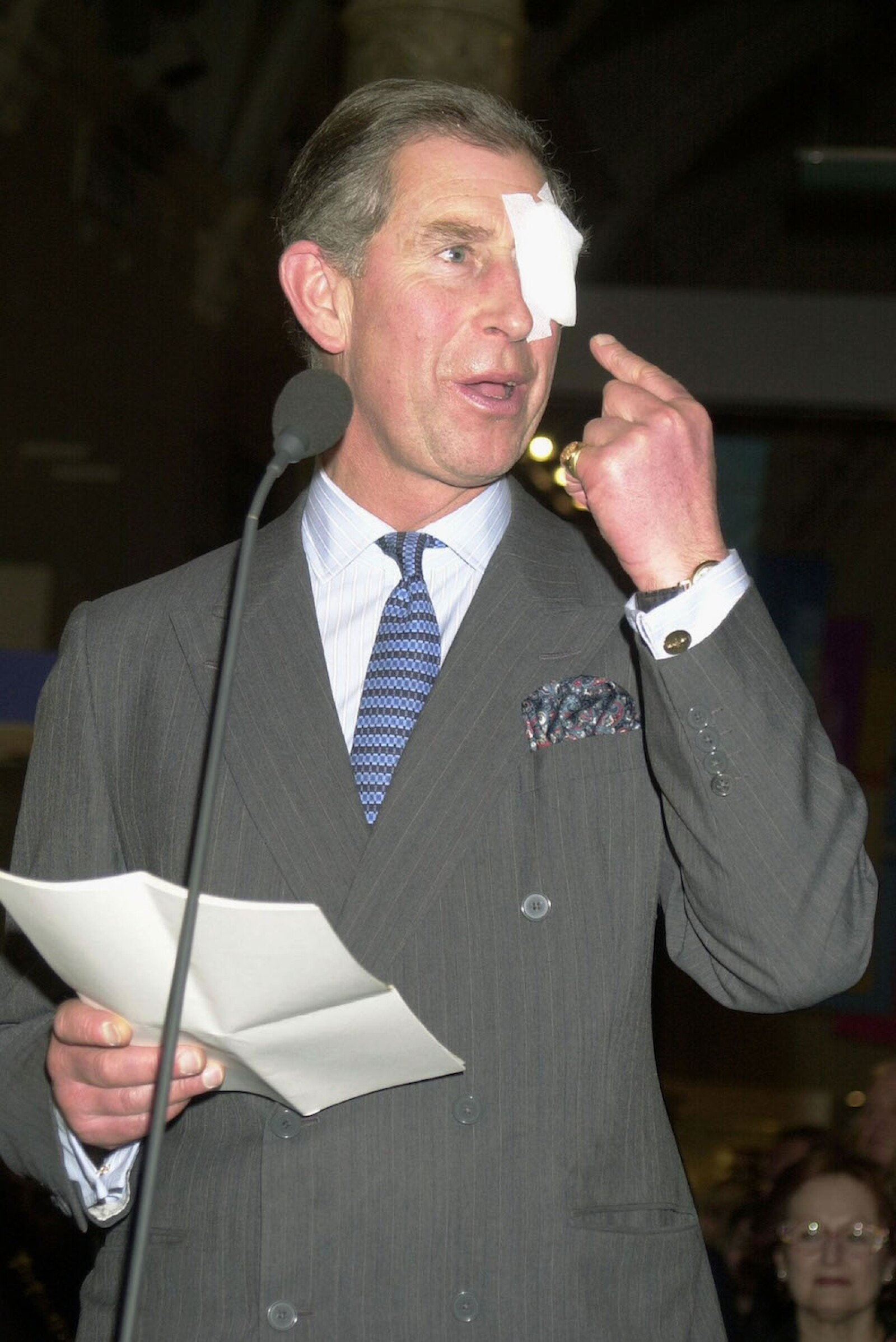 PRINCE CHARLES OPENS NEW GALLERIES