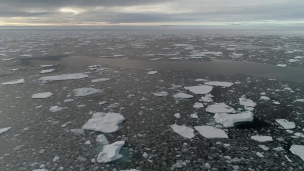 Casquete polar ártico en su segundo nivel más bajo desde que hay registro