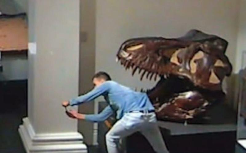 australian-museum.jpg