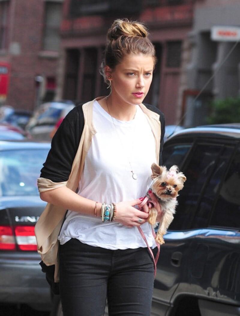Amber Heard, la esposa de Johnny Depp, paseando a uno de los perros.