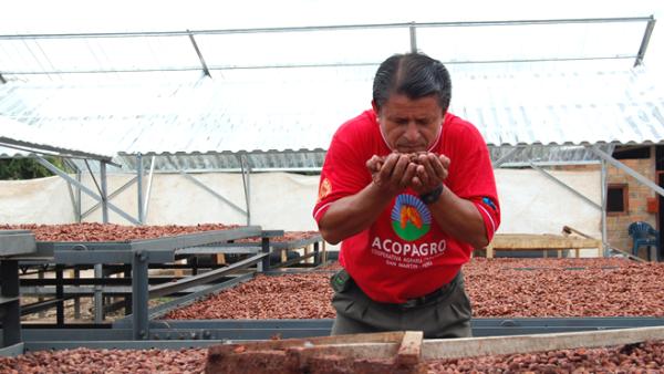 TCHOSource es nuestro �nico programa dedicado a colaborar directamente con los productores y trabajar estrechamente con ellos para producir un gran cacao.