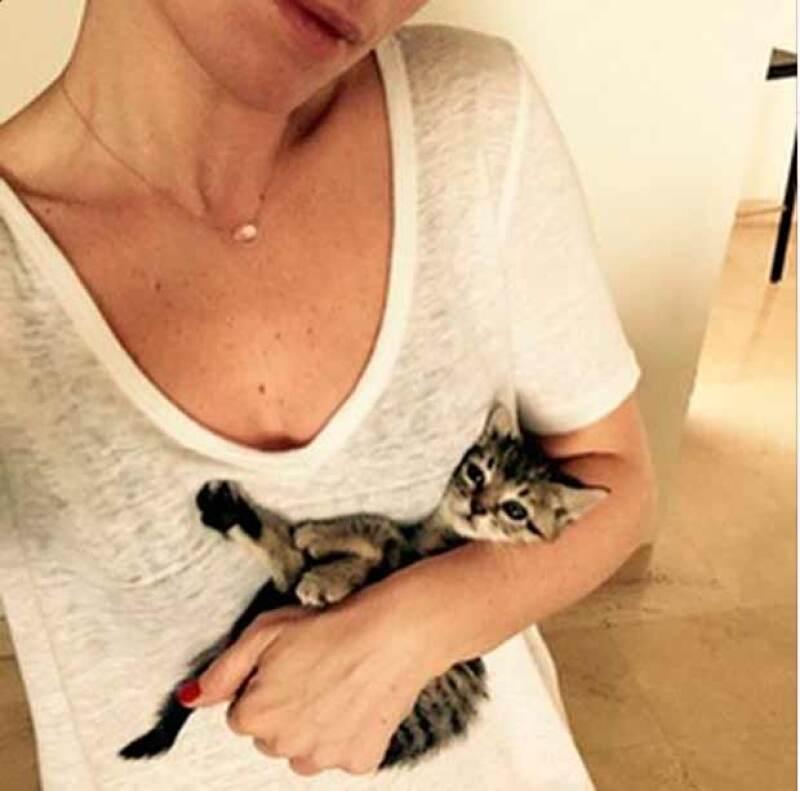 La actriz, que debutará próximamente en Telemundo, adoptó a un gatito de la calle, que fue bien recibido por sus mascotas.
