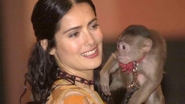 La infancia de la actriz se vio rodeada por animales exóticos, como tres tigres y después dos monos que le fueron obsequiados por el actor Antonio Banderas cuando trabajaban juntos.