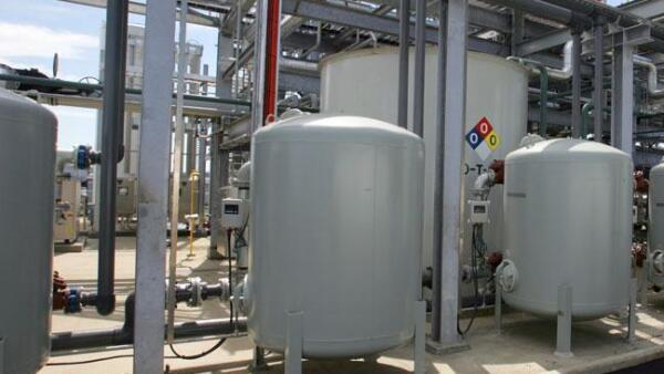Planta biodies�l