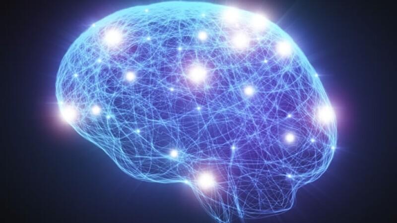 La actividad del cerebro humano registra una actividad similar cuando un persona sueña que cuando consume drogas psicodélicas