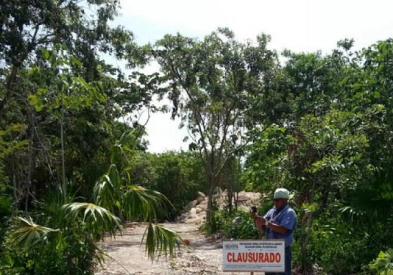 Profepa clausura deforestaci�n en cenote de Quintana Roo