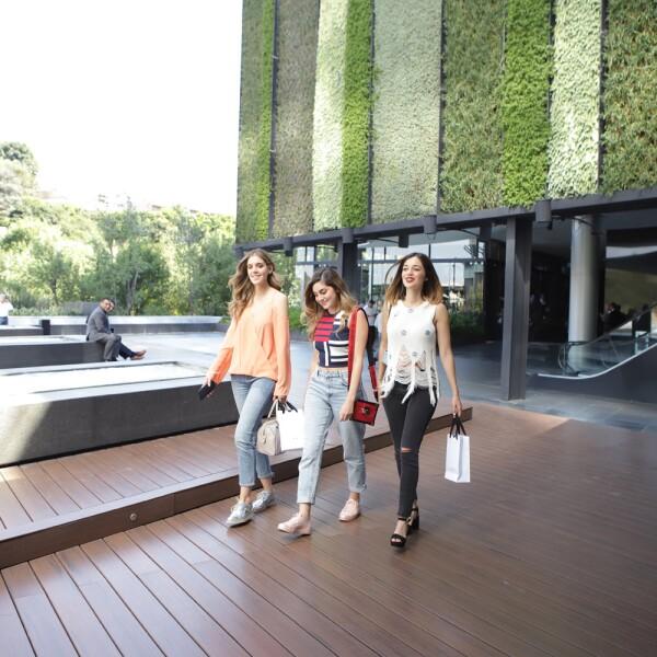 Experiencia Park Plaza