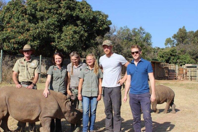 Durante su viaje por el continente africano, el príncipe tuvo la oportunidad de darle de comer a estos animales, confesando que la experiencia fue como &#39el trabajo de sus sueños&#39.