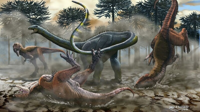 dinosaurio cuello largo