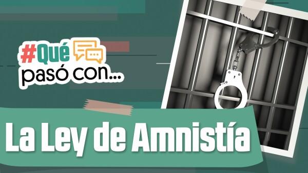 Ley de Amnistía #QuéPasóCon