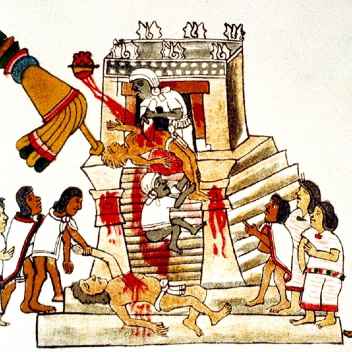 mayan sacrifice pit - 800×800
