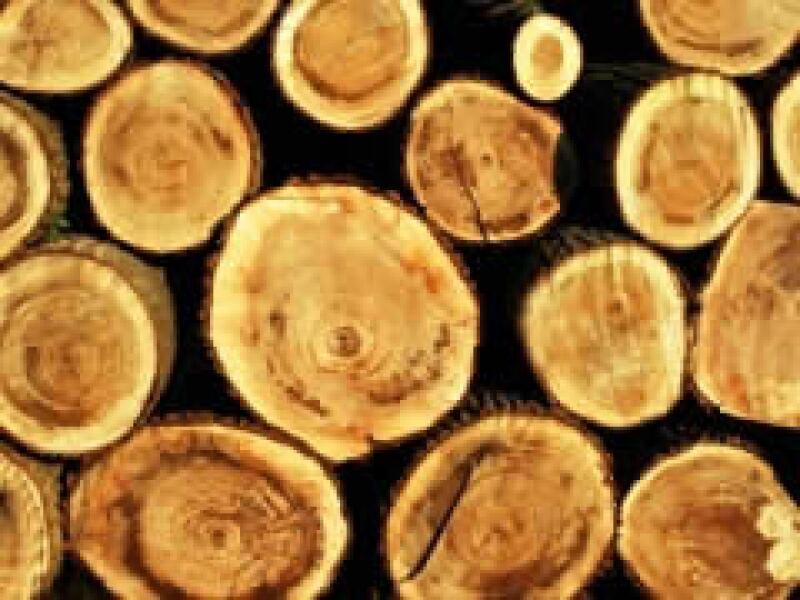 México produce solo 6.5 millones de m3 de madera, consume 23 millones.  (Foto: Stock)