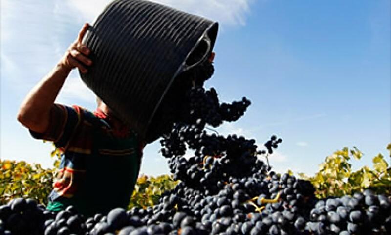 En 2010, el costo de exportación de vinos españoles era de 1.36 dólares por litro, frente a 1.74 dólares por litro en el 2000. (Foto: Cortesía Fortune)