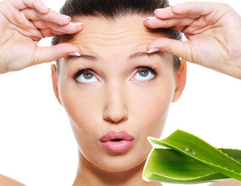 Además de ayudar con las quemaduras del sol, el aloe vera puede ser usado para cuidar la piel y el pelo. Descubre cómo puedes usar este gel en tu rutina de belleza.