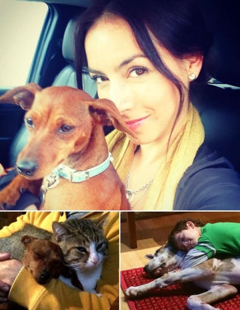 Claudia Lizaldi es gran amante de los animales y su hijo Iam también los adora.