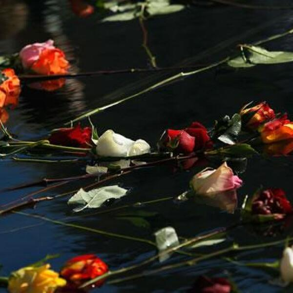 Flores en la piscina del 11 de septiembre