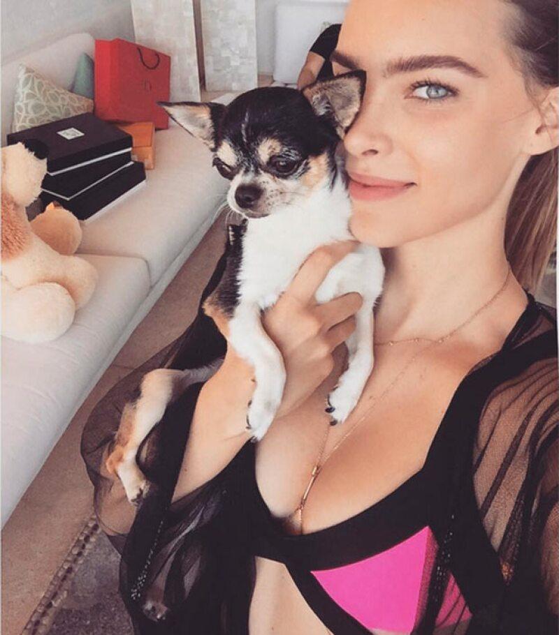 En su perfil de Instagram la cantante publicó una tierna imagen donde aparece su perrito, quien se encuentra grave debido a un soplo en el corazón.