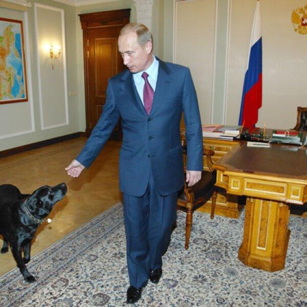 Vladimir Putin no tiene problema en llevar a su perrita Connie al trabajo.