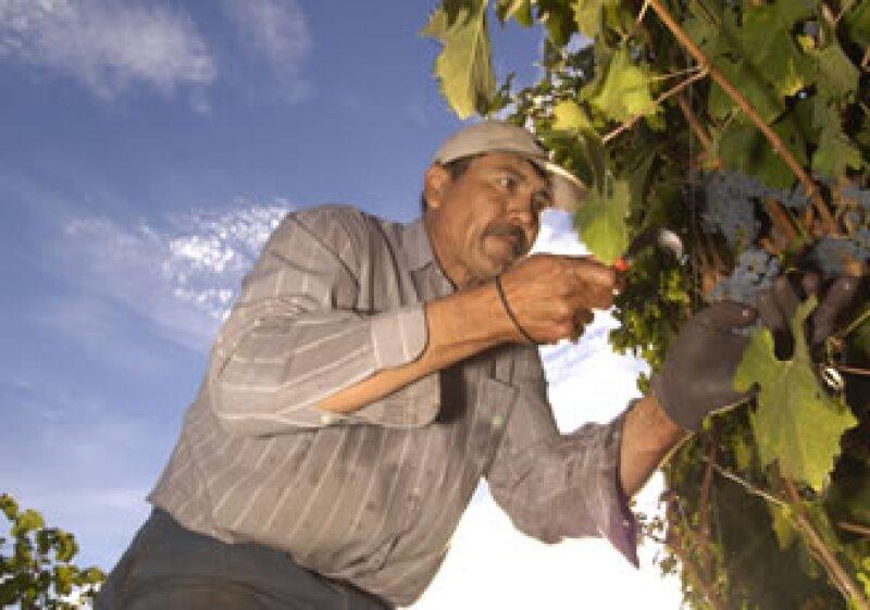 Entre los estados más competitivos se encuentran Nuevo León y Estado de México, pero el de mejor remuneración es el DF. (Foto: photos to go)