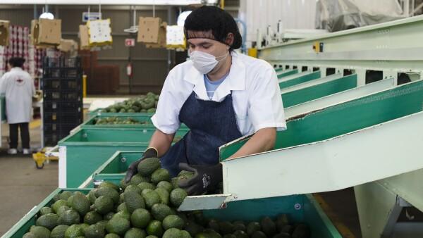 La producción que viene tendrá un impacto positivo en los precios al consumidor.