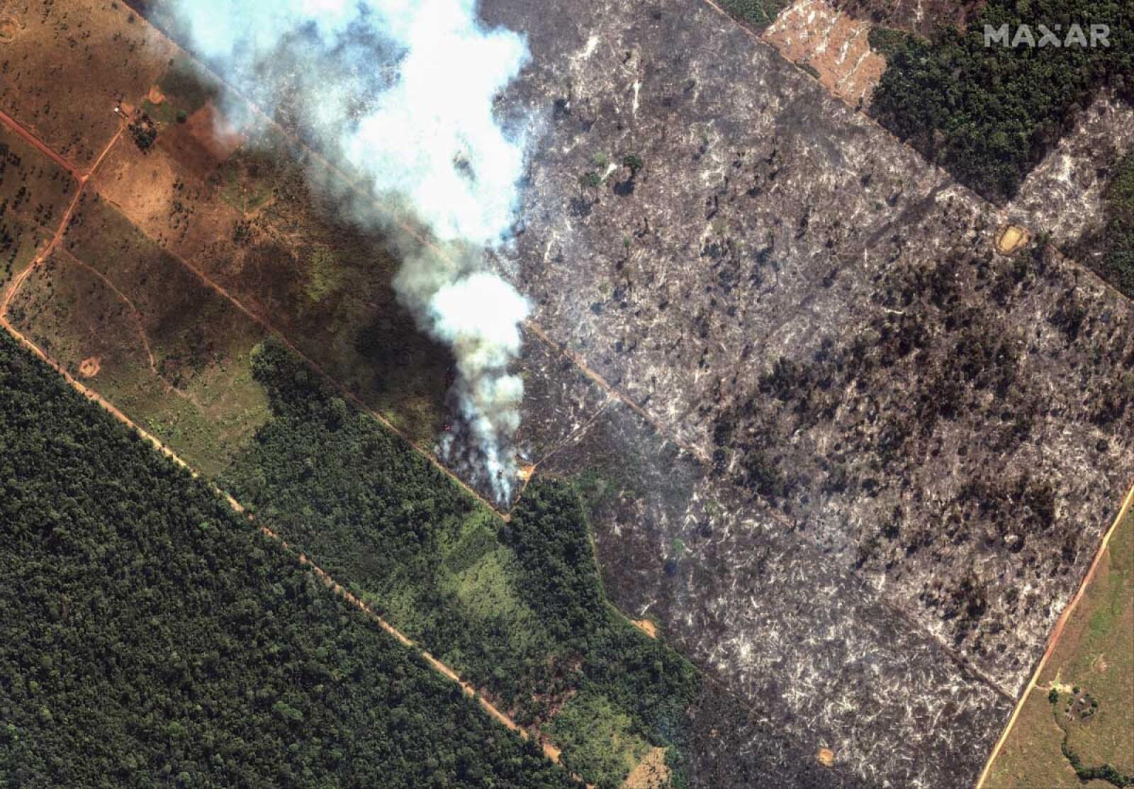 Incendios Amazonas-7